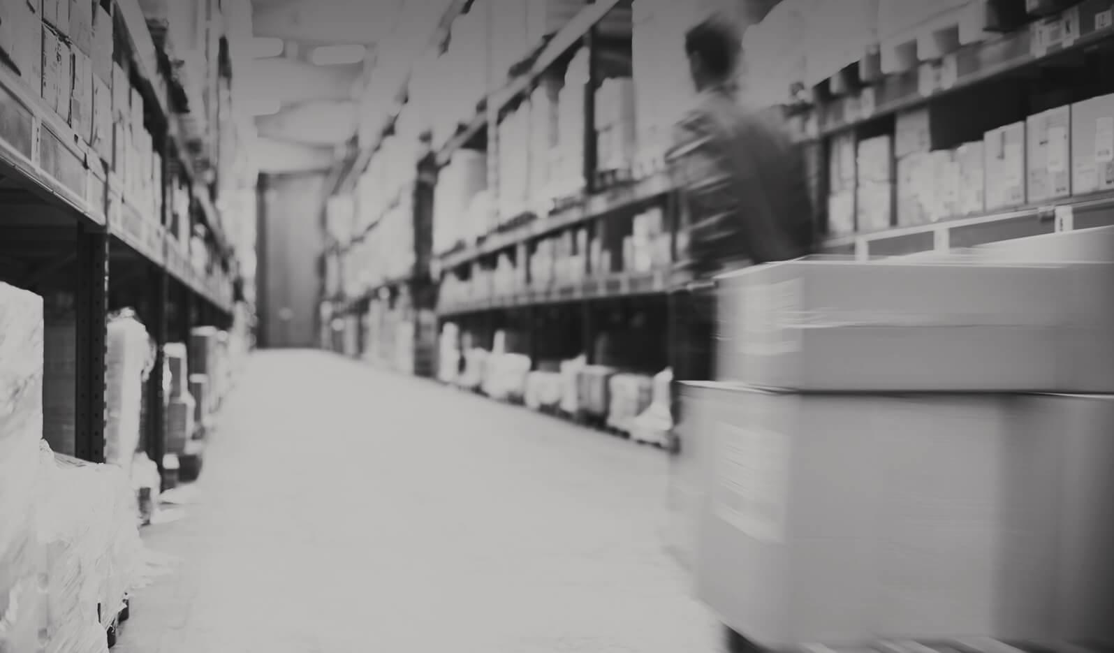 Warehouse essay